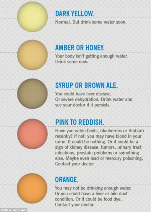 7 Urine Colors That Can Tell You Important Things