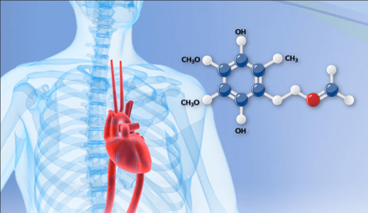 This One Antioxidant Will Eliminate Oxidative Stress And Optimize your heart health by 29%