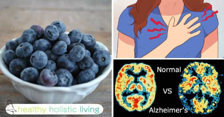 Here's Why You Should Be Eating At Least 1 Cup Of Blueberries A DAY