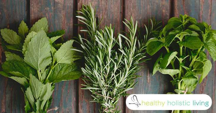 herbs for dementia prevention