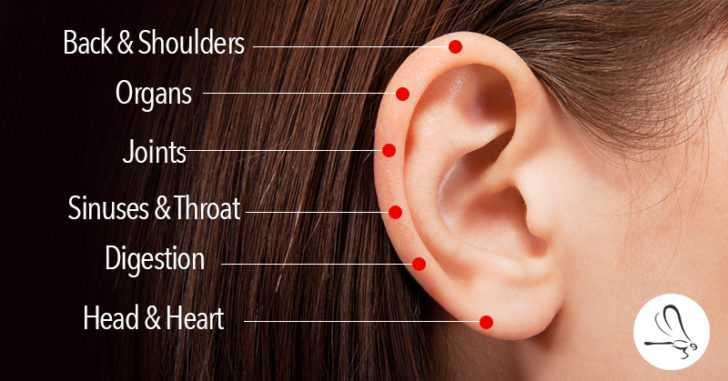 6 Touch-Points On The Ear To Heal Everything From a Stiff Back and Shoulders to Digestive and Sinus Issues